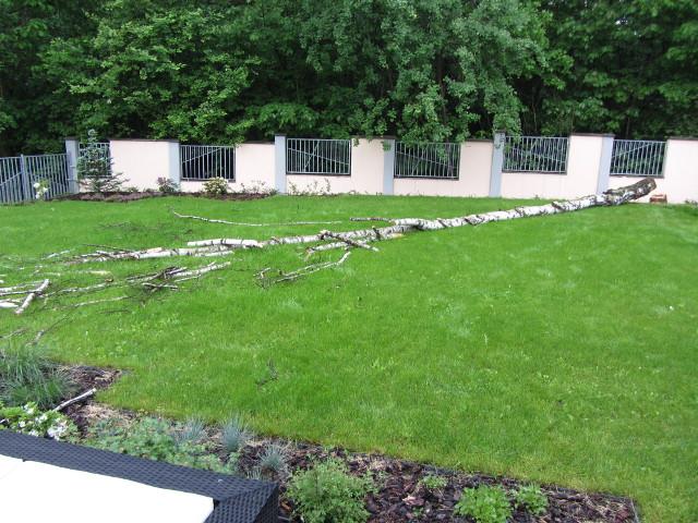 wycinka drzewa ogród tradycyjnie drwal 64x48